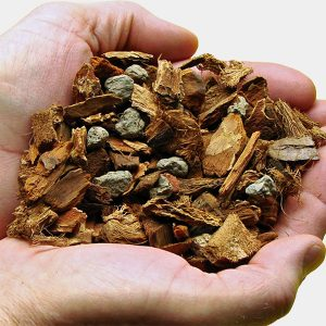 Orchid Bark Mixes